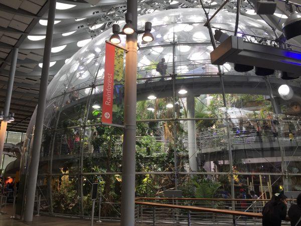 旧金山金门公园科学馆热带丛林馆